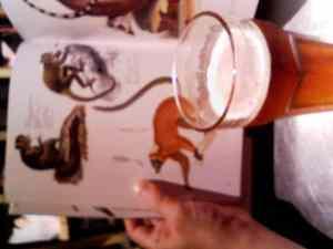 Beerzukan2_2
